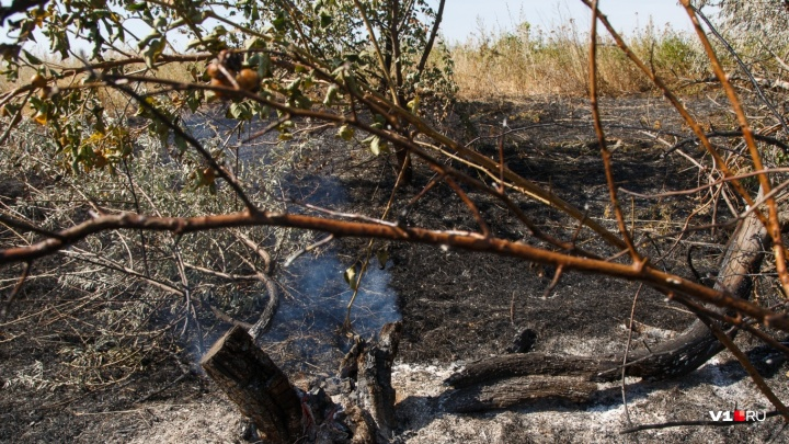 В Волгоградской области потушили огромный степной пожар в меловых горах