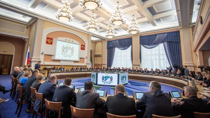 Десять депутатов Новосибирска попались на ошибках в декларациях о доходах