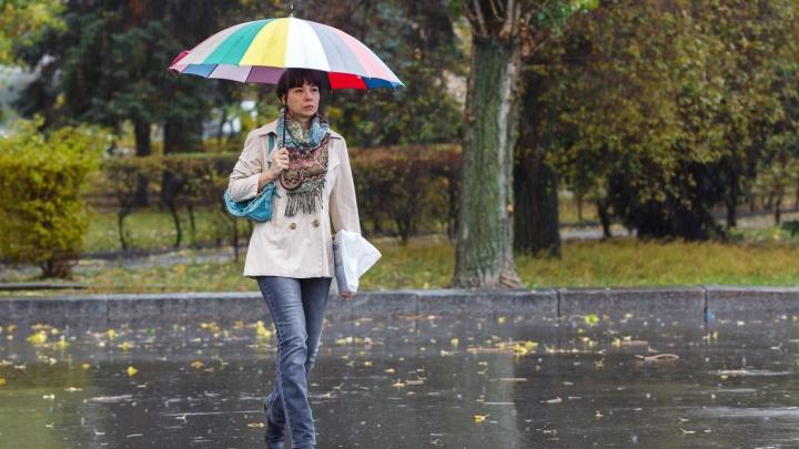 После «бабьего лета» в Волгоградскую область ворвется холодная и хмурая погода: прогноз на октябрь