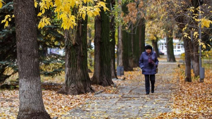 В Волгоградскую область возвращаются шквальный ветер и морозы до-14 ºС