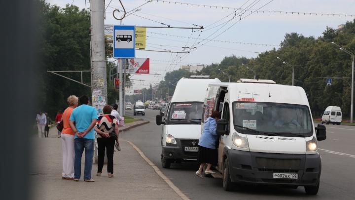 Нашли решение проблемы: в Уфе нелегальных перевозчиков хотят потеснить «умными» остановками