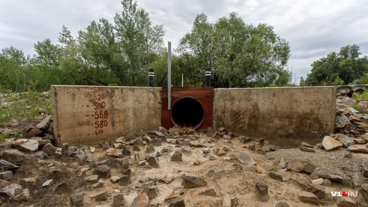 «Ждем воды, как коммунизма»: волгоградские чиновники вспомнили про обводнение поймы
