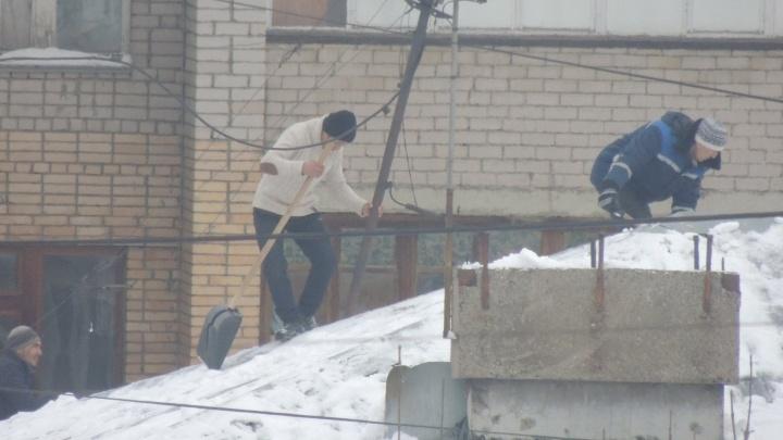 «Лопата вместо ремней»: в Самаре рабочие очищали крышу от снега без страховки