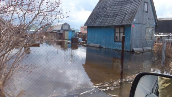 В Ярославле может затопить 37 жилых домов: в МЧС сообщили о повышении уровня Волги до неблагоприятной отметки