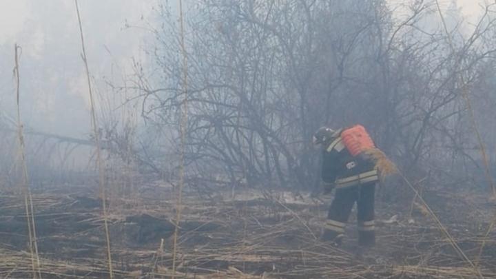 На Обском море под Новосибирском загорелся остров
