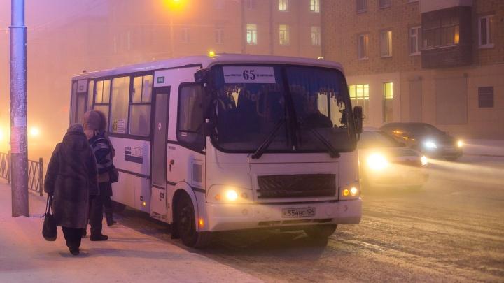 В мэрии рассказали, какие автобусы не вышли на линию из-за холодов
