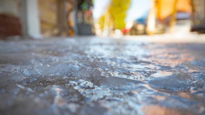 МЧС: в Ростовской области ожидают заморозки