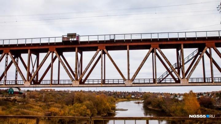 Ради нового моста в Омске срубят тысячу деревьев и снесут дома