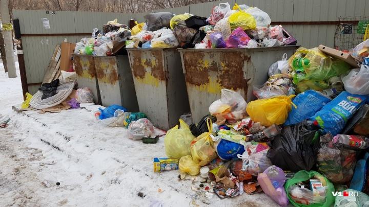Волгоград тонет в мусоре: народная карта дворовых свалок продолжает расширяться