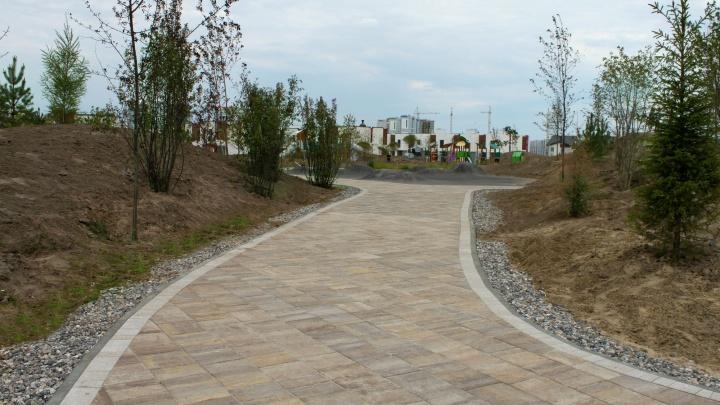 В Тюмени появилась красивая тротуарная плитка