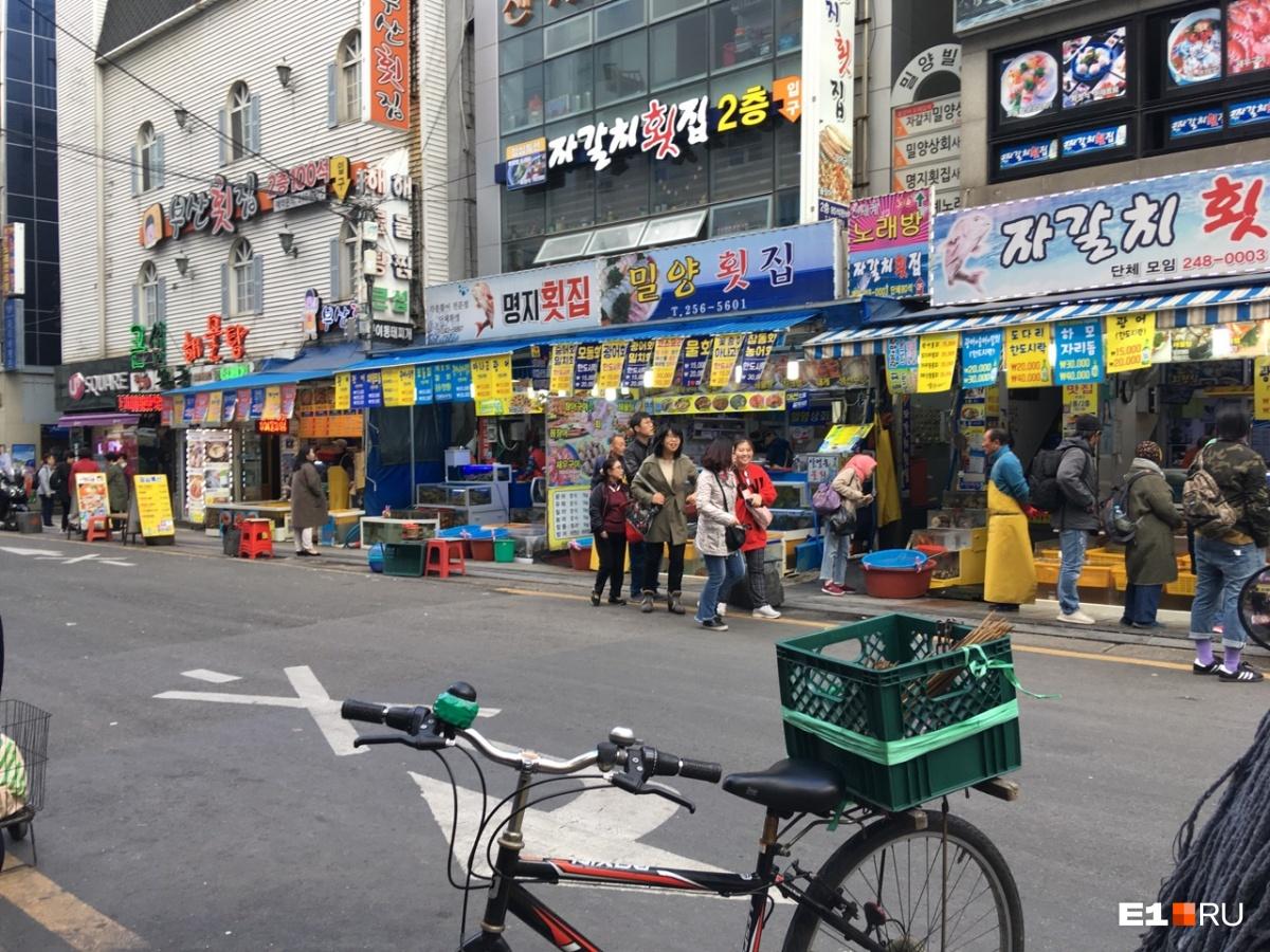 Страна без урн на улицах, но с роботами в аэропорту: отправляемся за впечатлениями в Южную Корею