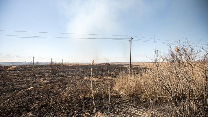 Чрезвычайная пожароопасность сохранится в Ростовской области с 28 по 30 июня