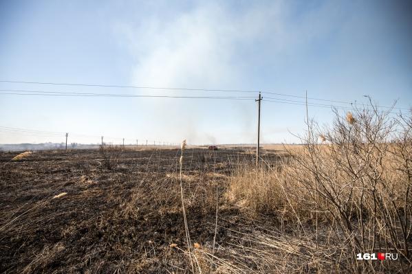 В Ростовской области с мая предупреждают о высоком риске пожаров