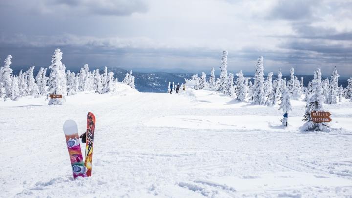 Новосибирцы разработали приложение, которое позволяет следить за друзьями на горнолыжных курортах