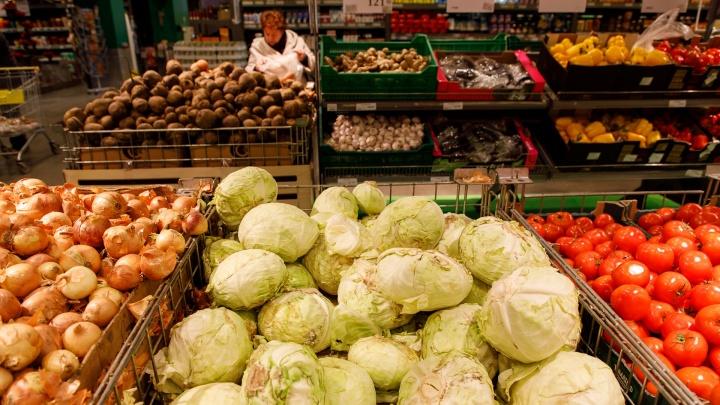 Собрали урожай: в Волгоградской области подешевели продукты