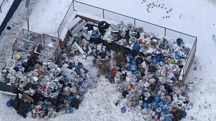 «Потерпите месяц»: регоператор объяснил сбои с вывозом мусора из самарских дворов