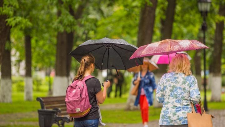 Прощай, лето! Синоптики рассказали, какая погода будет в эти выходные в Ярославле