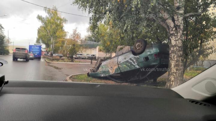 Тигр под березами: в Башкирии легковушка картинно прилегла на газон