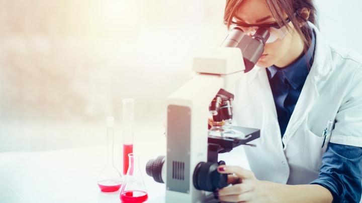 Ученые Кольцово создали капсулы с бактериями: разработка помогает быстро наладить работу кишечника