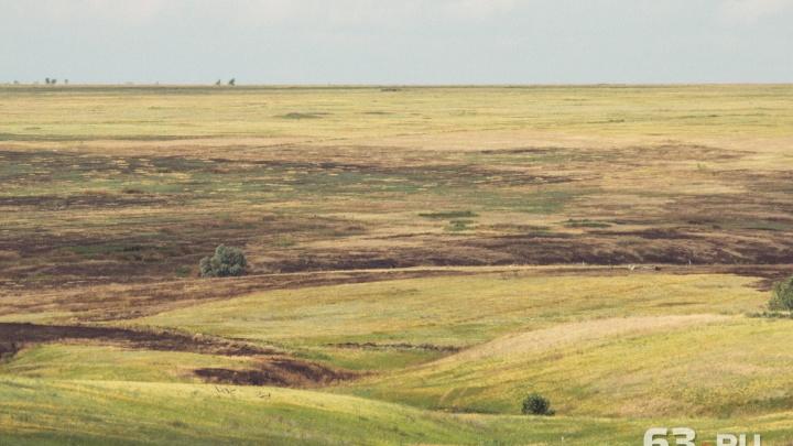 В Самарской области зафиксировали почвенную засуху и суховеи