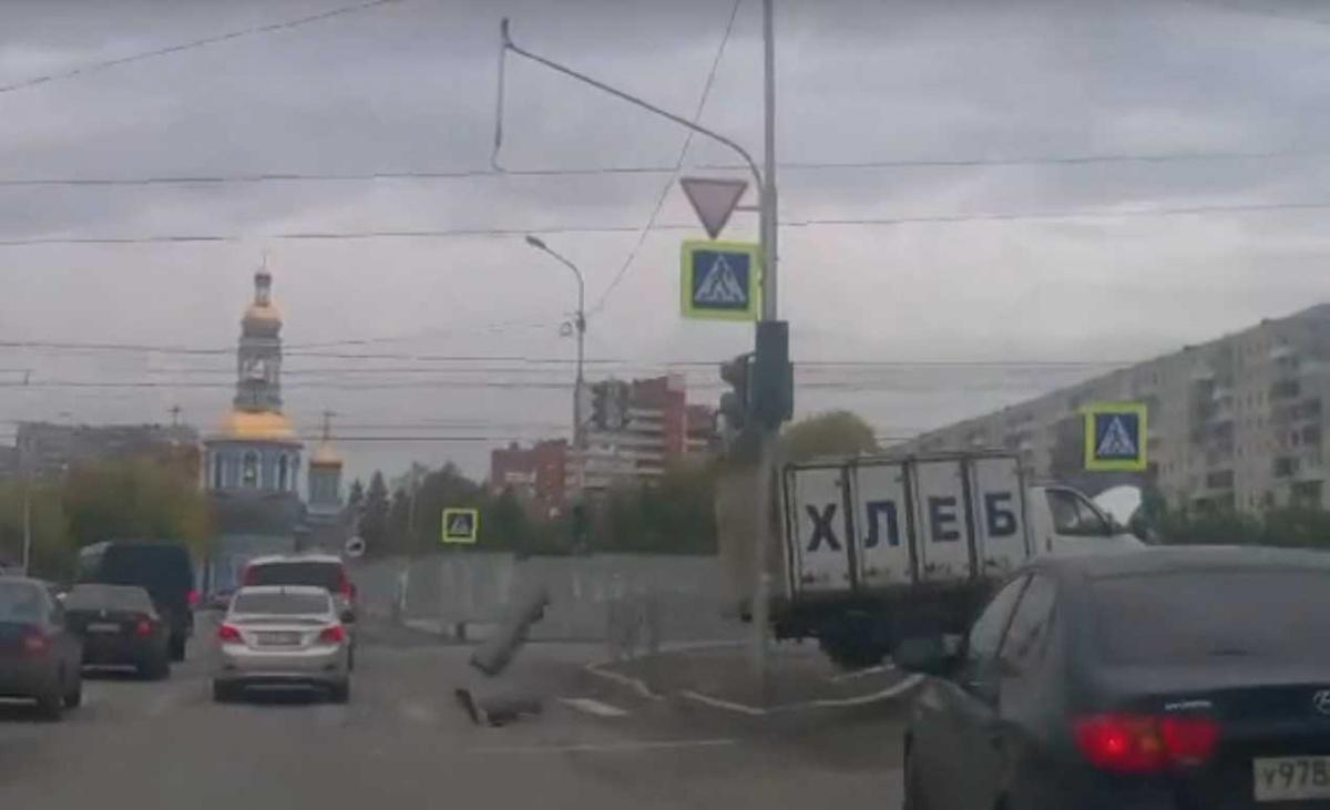 Бошки Опт Соликамск Мяу Куплю Энгельс