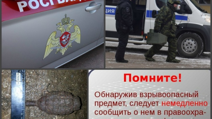 «Думал, что камень»: житель Башкирии нашел на огороде гранату
