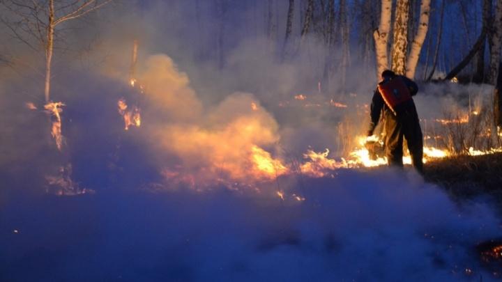 Южному Уралу грозит волна лесных пожаров