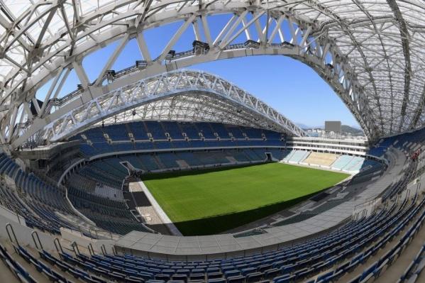 Поле стадиона «Фишт» в Сочи