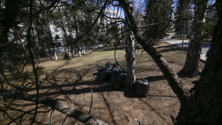 Лучше пока не стало: глав районов Челябинска и предпринимателей снова отчитали за плохую уборку