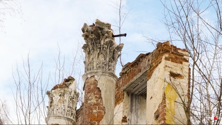 Власти попросили ярославцев бесплатно помочь сохранить развалины Петропавловского парка