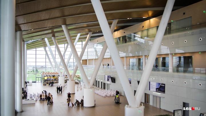 Электронные посадочные билеты в аэропорту Платов начнут принимать к лету