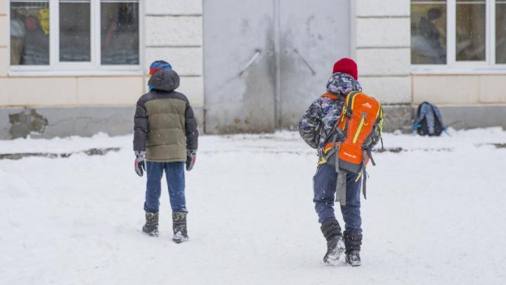 В школу можно не ходить: кого в Ярославле освободили от учёбы