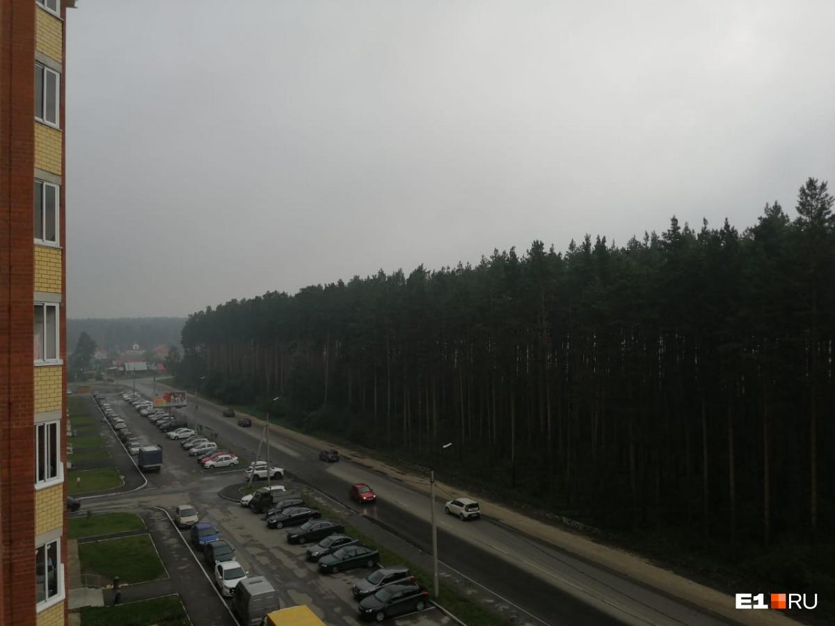А это фото от соседей из Березовского. «У нас тоже в воздухе стойкий запах гари, а в глазах— как в песне Вячеслава Добрынина «Синий туман»», — пишет читательница