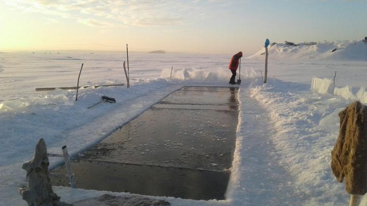 «В –30 будем работать»: моржи сделали в Обском море постоянную прорубь
