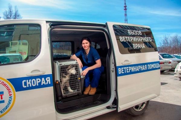 Ветеринарная неотложка работает уже три дня