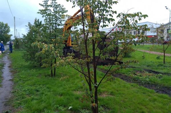 Экскаватор разрыл зеленый газон