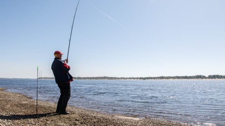 Придется смотать удочки: на берегах Волги засыхают тонны икры после весеннего нереста — видео