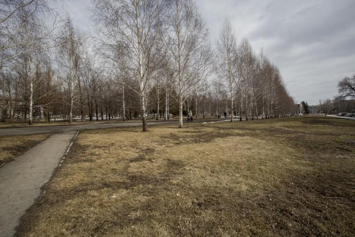 Участок выделили из сквера на площади Кирова —сегодня здесь гуляют горожане