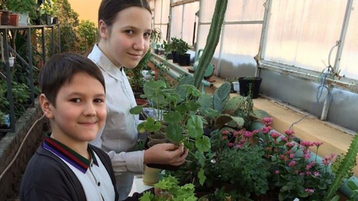 Школьники Красноярска решили сделать гипоаллергенные духи для подростков