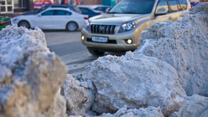 «Давайте сразу уборщицу»: личный опыт новосибирца, который пытался оставить заявку на уборку дороги