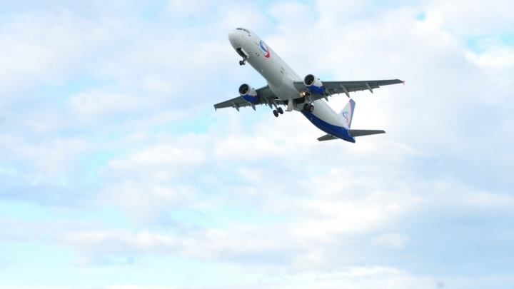 Рейс из Краснодара в Екатеринбург задержали на 12 часов из-за птицы в двигателе