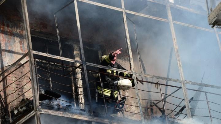 Пожар на Вайнера потушили. Из здания спасли мужчину, кота и собаку