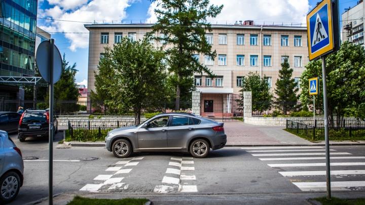 У новосибирских школ и детских садов появится особая дорожная разметка