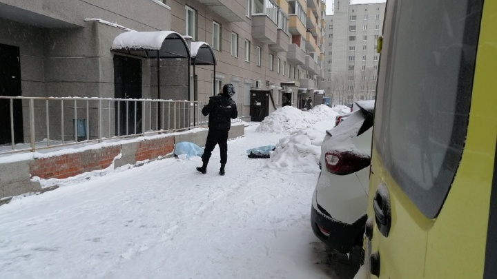 Что известно про трагедию на Добролюбова, где под окнами высотки нашли двух погибших девочек