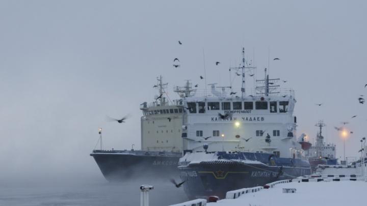 Морозы, снег, оттепель: метеозависимым жителям Поморья на этих выходных придется не сладко