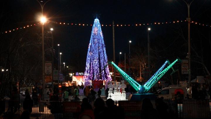 У кого ёлка выше: сравниваем главные символы Нового года в городах страны