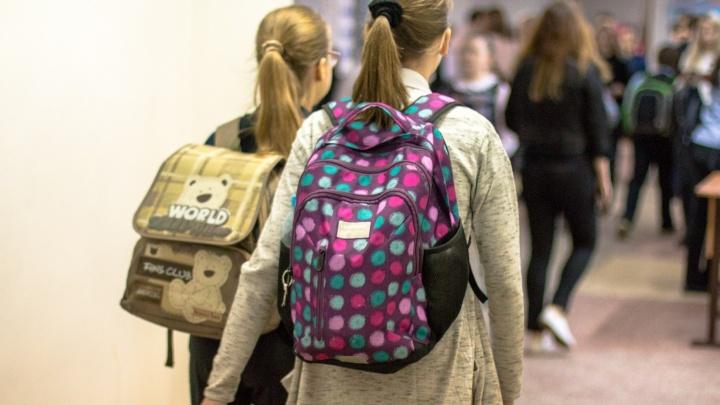 Министерство просвещения РФ забраковало предложение самарцев зачислять братьев и сестер в одну школу