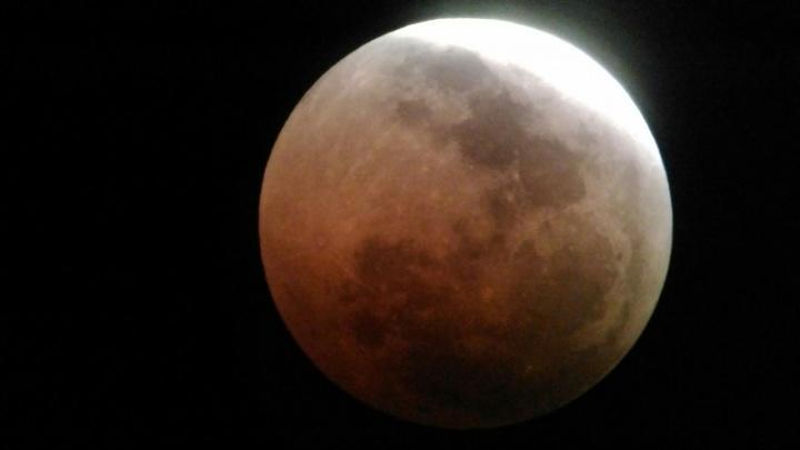 И Земля затмила Луну: самые необычные фото «кровавого» явления над Волгоградом