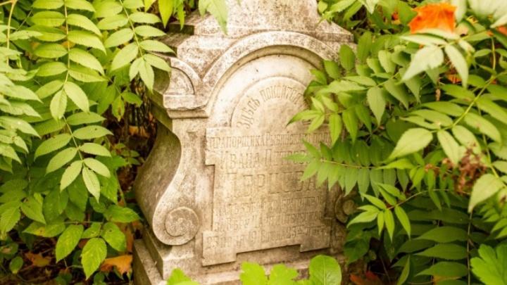 Огненный столп, склепы и могилы дворян: 11 фото со старинного деревенского кладбища