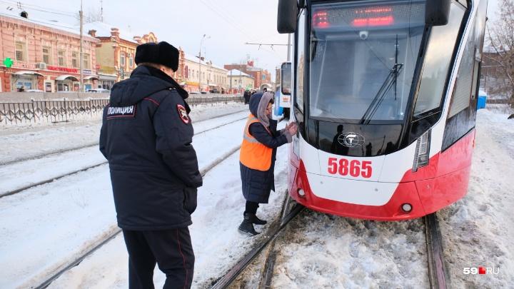 Новый трамвай «Лев» сняли с линии из-за сбоя в программном обеспечении